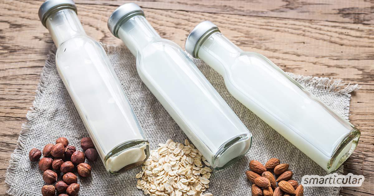 Pflanzenmilch in Flaschen ist schwer zu finden. Wer auf Tetra-Packs lieber verzichten möchte, interessiert sich vielleicht für diese Startups, die pflanzliche Milch in der Mehrweg-Variante herstellen möchten.