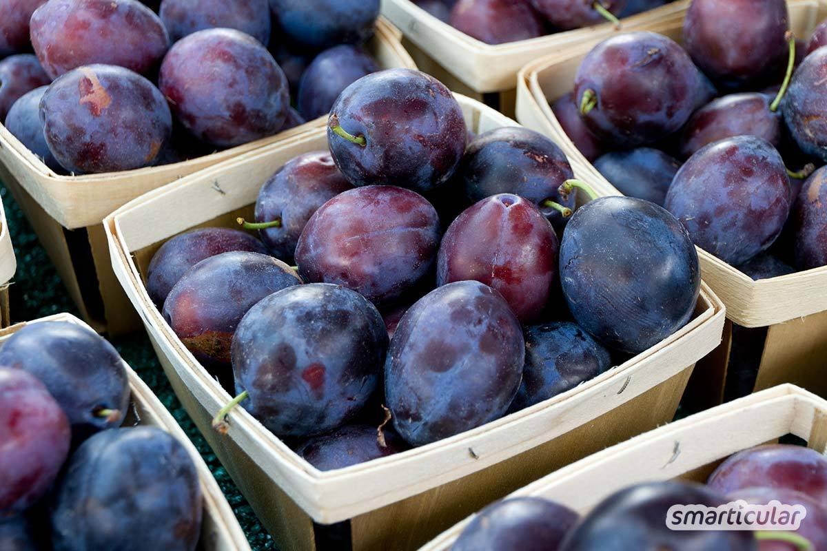 Der Saisonkalender Juli verrät dir, welche regionale Obst- und Gemüsesorten jetzt reif sind -  zum Beispiel Beeren, Pflaumen, Tomaten, Auberginen und Rote Bete