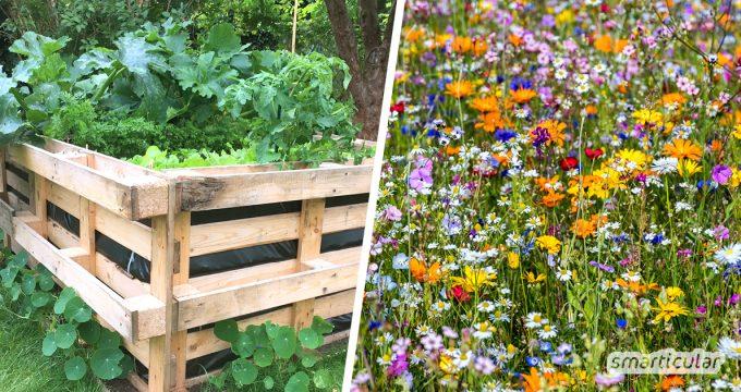 Naturnahes Gärtnern schont die Umwelt und bietet Vögeln und Insekten ein Zuhause. 11 kleine und große Projekte helfen bei der Gestaltung eines Biogartens.