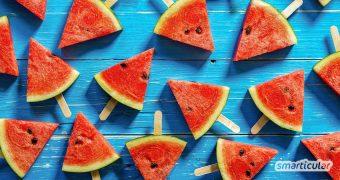 Wenn die Sommerhitze ohnehin schon dem Körper zusetzt, hilft gesundes, leichtes Essen, um fit zu bleiben. Mit diesen leichten Sommergerichten kommst du gut durch die heißen Tage.