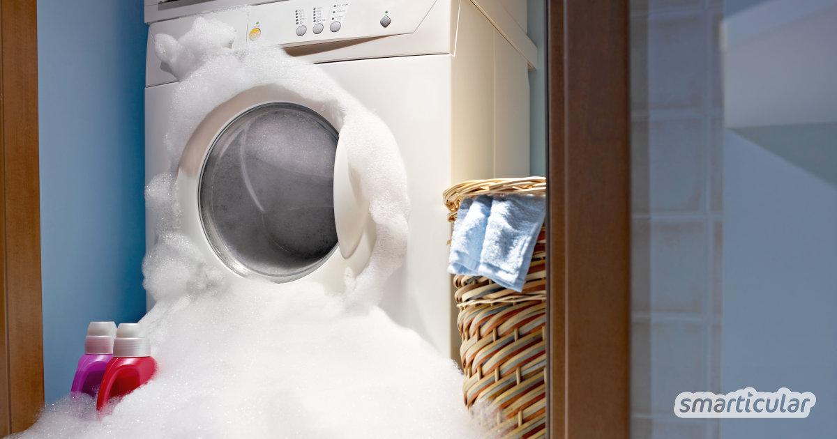 Die Wäsche wird auch mit wenig Waschmittel oder ökologischen Alternativen sauber: Davon profitiert nicht nur die Umwelt, sondern auch der Geldbeutel.