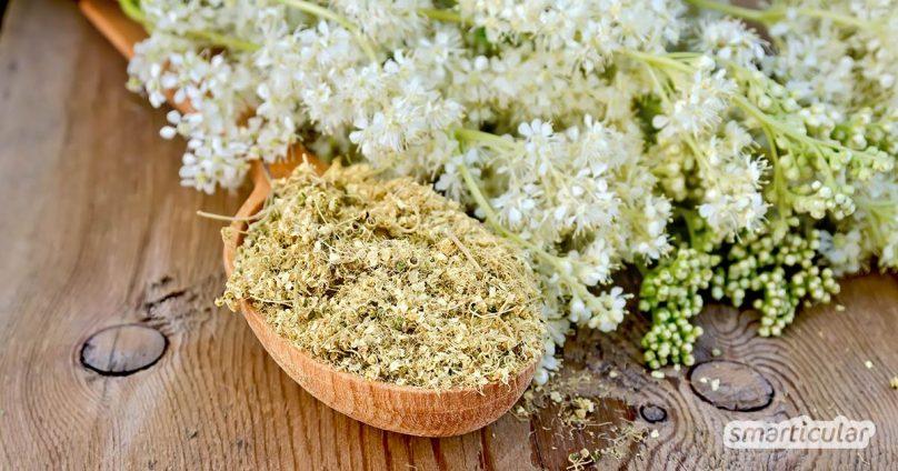 Mädesüß, Weidenrinde und bestimmte Lebensmittel wirken wie Aspirin, da sie den verwandten Wirkstoff Salicylsäure enthalten. So helfen die Heilpflanzen gegen Schmerzen, Fieber und Entzündungen.