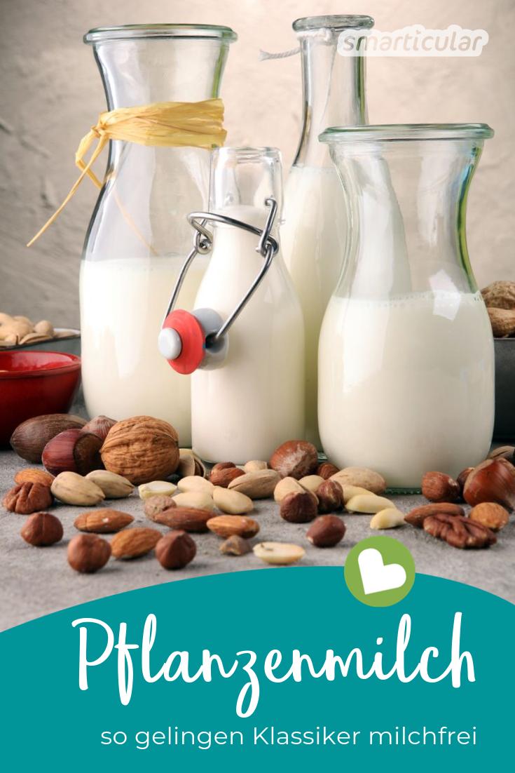 Ob aus gesundheitlichen oder ökologischen Gründen, immer mehr Menschen suchen nach einem Ersatz für Kuhmilch. Mit diesen Tipps gelingen Klassiker wie Milchreis, Pudding und Co. milchfrei.