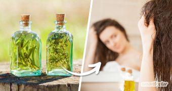 Eine Kräuteressig-Haarspülung vereint die pflegenden Eigenschaften von Apfelessig mit den Wirkstoffen verschiedener Kräuter. Wähle das passende Kraut für deinen Haartyp!