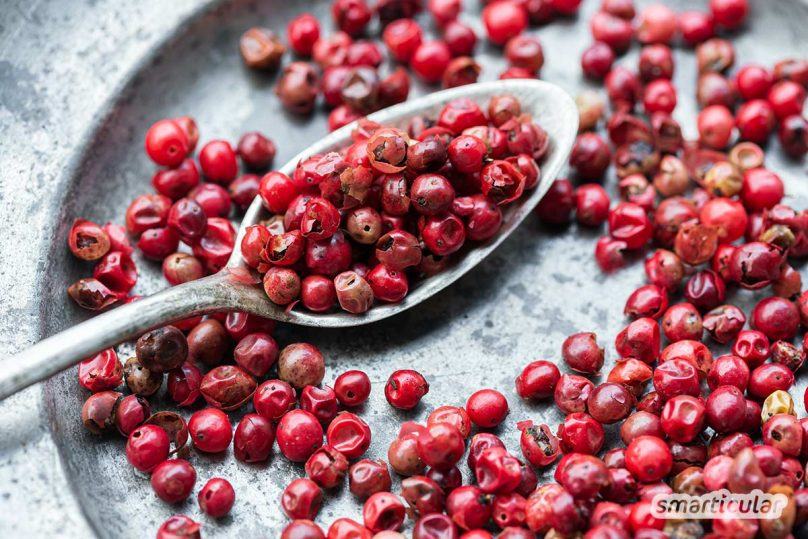Pfeffer gibt den Speisen nicht nur eine schön scharfe Würze, sondern ist außerdem richtig gesund! Wie er deine Verdauung unterstützen und bei Erkältung helfen kann, erfährst du hier.