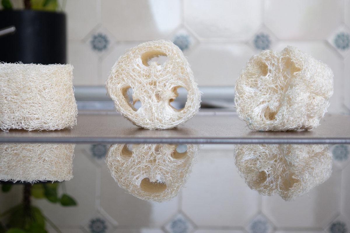Luffaschwämme sind eine nachhaltige, plastikfreie Alternative zum Dusch- und Spülschwämmen aus Kunststoff. The Closest Loop möchte sie erstmals in Deutschland produzieren.