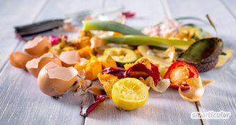 Essensreste und übrig gebliebenes Obst, Gemüse und Brot müssen nicht in der Tonne landen! Mit den folgenden Tipps kannst du kreative Gerichte aus Resten kochen.