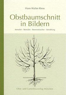 Obstbaumschnitt in Bildern Kernobst - Steinobst - Beerensträucher - Veredlung. 91 Abbildungen.