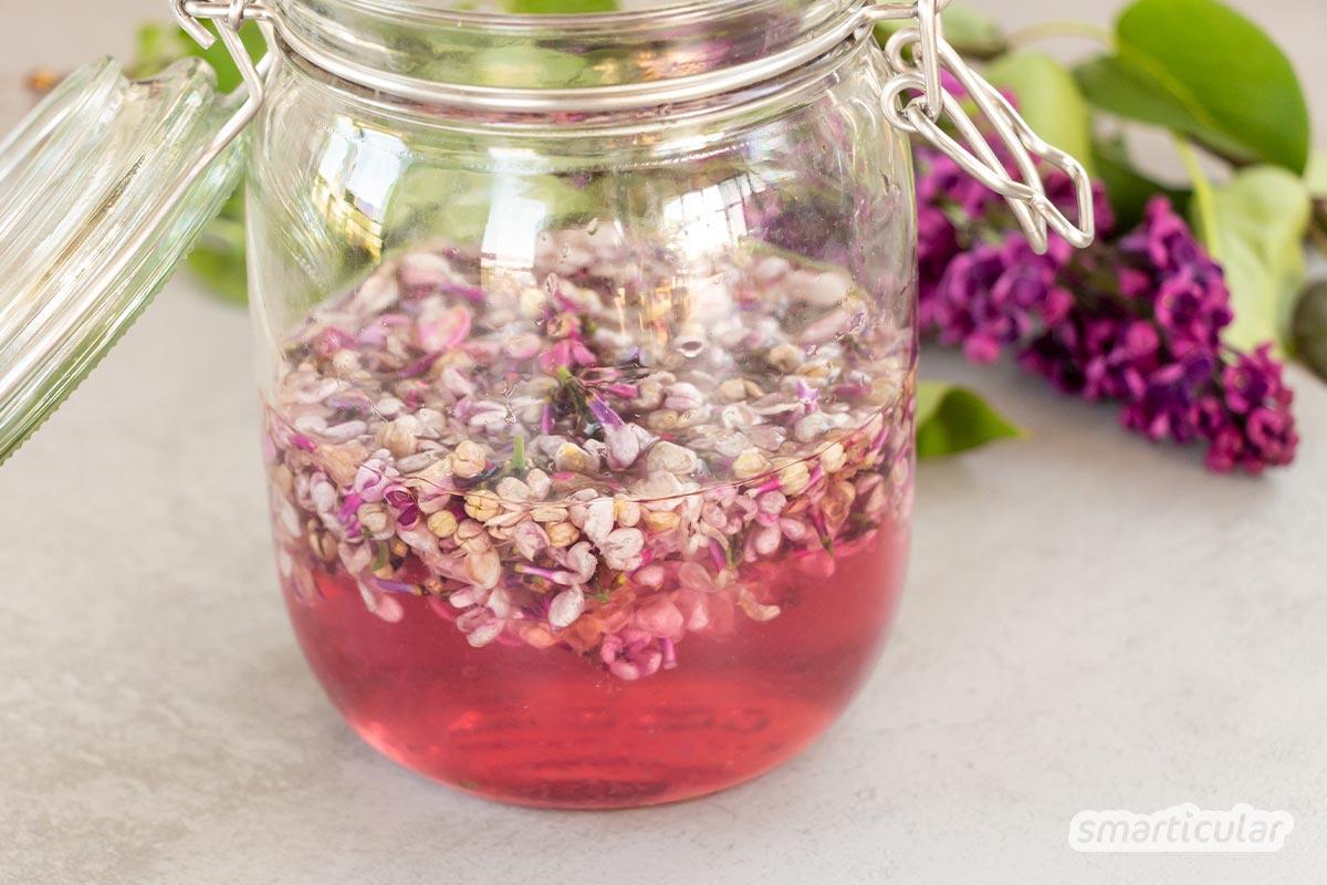 Fliederblüten verströmen einen betörenden Duft. Mit diesem Rezept für Fliederblütensirup lassen sich die feinen Aromen und das Farbenspiel konservieren.