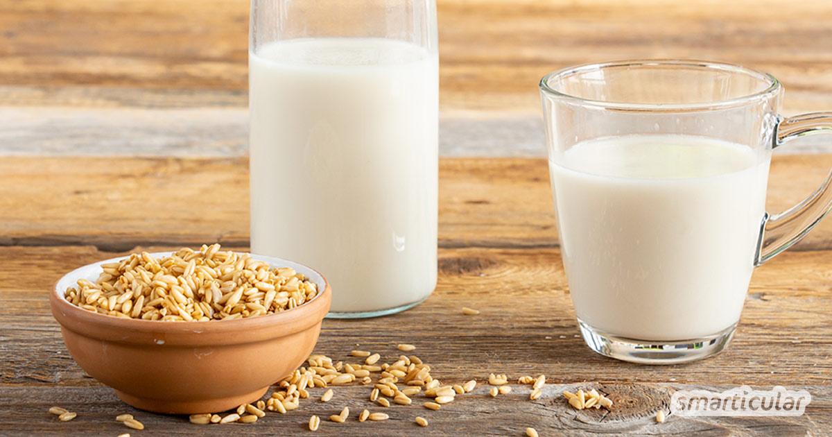 Hafermilch selber herzustellen, ist weder schwer noch teuer. Im Gegenteil! Alles, was du für diese vegane Milch brauchst, sind Haferkörner und Wasser.