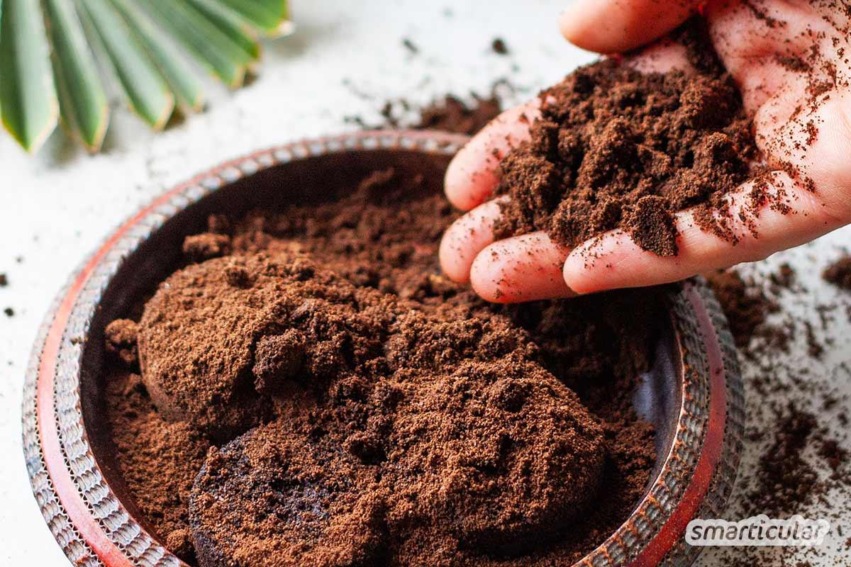 Ein effektives Gesichtspeeling lässt sich schnell und einfach selber machen mit Kaffeesatz: Es massiert und durchblutet die Haut und kostet fast nichts!