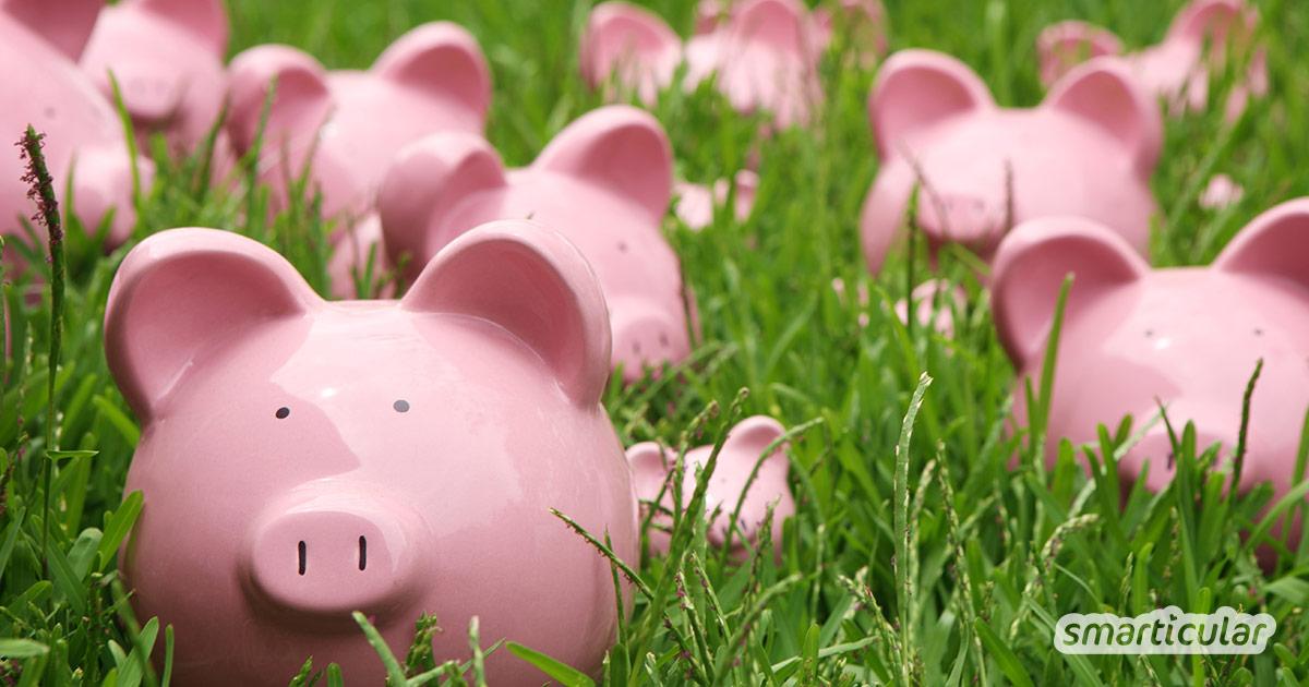 Nachhaltig Leben muss nicht teuer sein! Mit diesen Tipps schonst du deinen Geldbeutel und die Umwelt gleichermaßen.