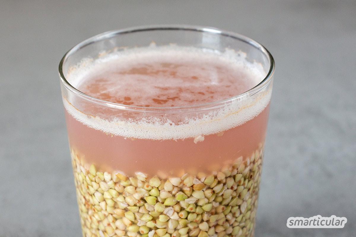 Buchweizenmilch ist eine glutenfreie und nussfreie Pflanzenmilch, die du im Handumdrehen preiswert selber machen kannst.
