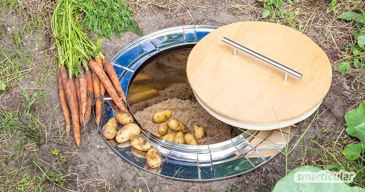 Ein Erdkeller lässt sich ganz einfach aus einer alten Waschmaschinentrommel bauen. Er dient als kühles, frostfreies Lager unter anderem für Kartoffeln, Möhren und Äpfel.