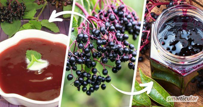 Holunderbeeren als Marmelade, Fruchtsuppe oder Tee - hier findest du köstliche und gesunde Rezepte, um Holunderbeeren zu verarbeiten.