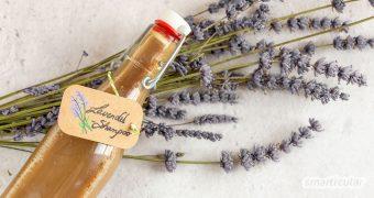 Lavendel-Shampoo beruhigt juckende und entzündliche Kopfhaut und beugt Schuppen vor. In wenigen Schritten kannst du es leicht selbst herstellen!