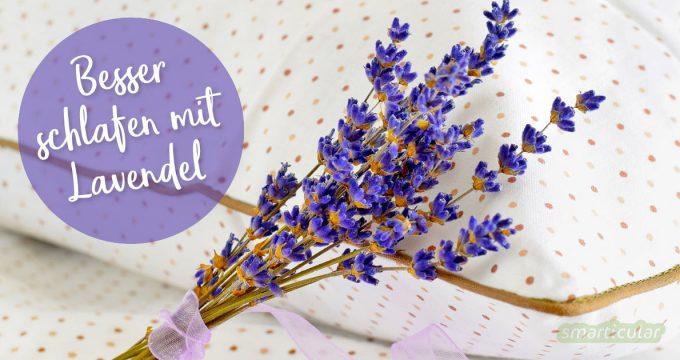 Lavendel unterstützt einen gesunden Schlaf und lindert mit seinen natürlichen Heilkräften Unruhe und Abgespanntheit. So nutzt du Lavendel für den gesunden Schlaf.