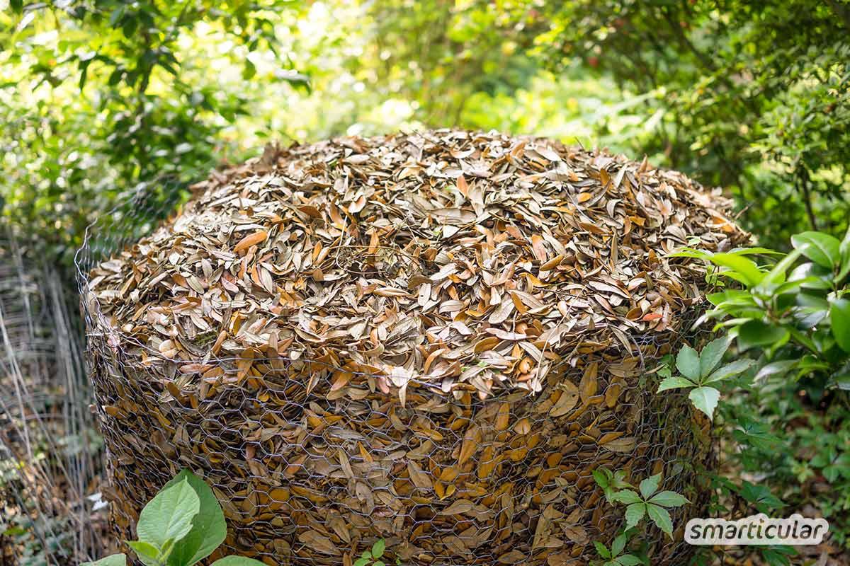 Große Mengen Herbstlaub lassen sich in einem Laubkompost zu fruchtbarer Erde kompostieren, statt sie im Bioabfall zu entsorgen. Wie das geht, erfährst du hier.