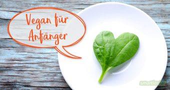 Mit diesen veganen Lebensmitteln ist es ein Leichtes, vegane Rezepte für Anfänger zu kreieren - für mehr pflanzliche Alternativen oder um vegan zu werden!