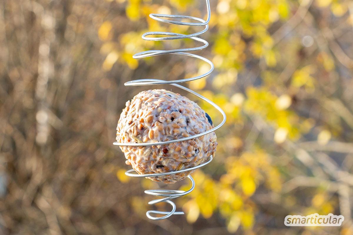 Wer auf Plastiknetze lieber verzichten möchte, kann einen Meisenknödelhalter selber machen und die nährstoffreichen Futterbälle lose kaufen oder ebenfalls selbst herstellen.