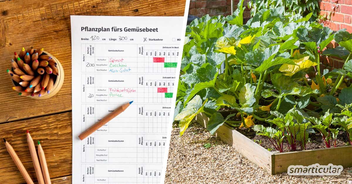 Um eine optimale Gemüseernte im Garten zu erzielen, empfiehlt es sich, den Gemüsegarten zu planen - am besten mit unserem Pflanzplan zum Ausdrucken und Ausfüllen.