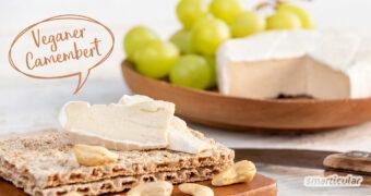 Mit Cashewkernen gelingt ein köstlicher veganer Camembert! Dabei ist es mit diesem Rezept sogar einfacher als die traditionelle Käseherstellung.