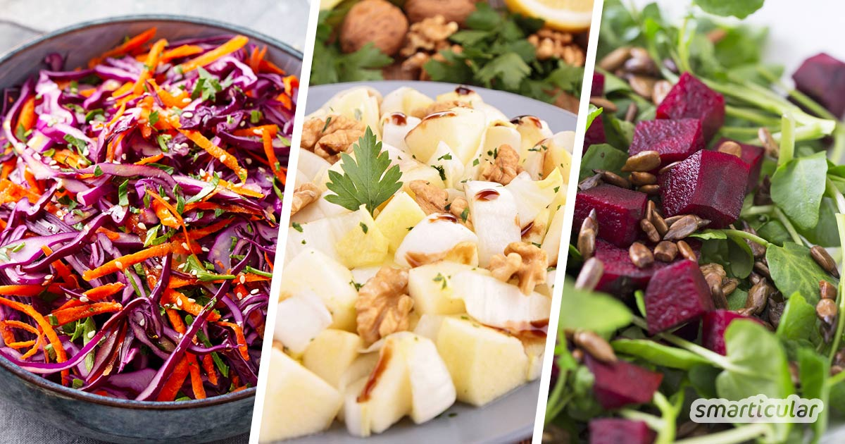 Wintersalate aus saisonalen und regionalen Zutaten bereichern den Speiseplan in der kalten Jahreszeit und versorgen dich mit zahlreichen Vitalstoffen.