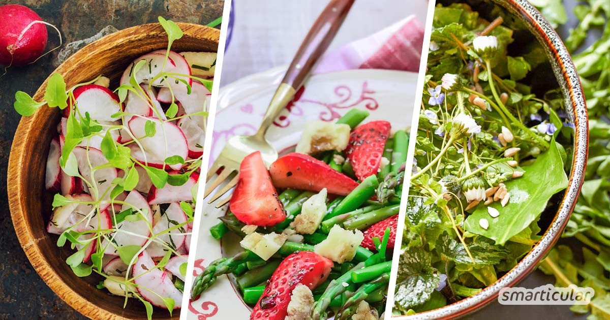 Frühlingssalate aus saisonalen und regionalen Zutaten bringen im Frühjahr die ersten frischen Vitamine auf den Teller - zum Beispiel mit diesen köstlichen Rezepten.
