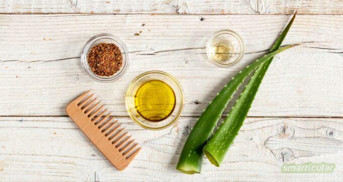 Statt ihn zu kaufen, lässt sich ein Leave-in-Conditioner aus wenigen natürlichen Zutaten ganz einfach selber machen. Das spart Geld und Verpackungsmüll.