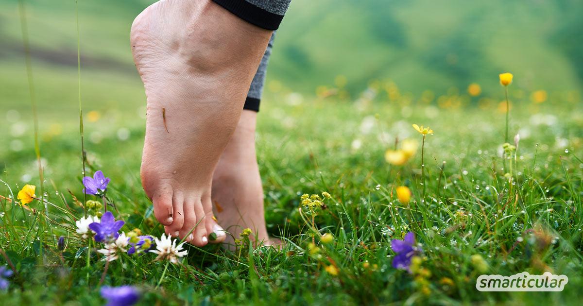 Mit nur wenigen Hausmitteln und ein bisschen Zeit und Liebe werden deine Füße fit für den Frühling und den Sommer. Hier kommen 5 Tipps für schöne Füße!