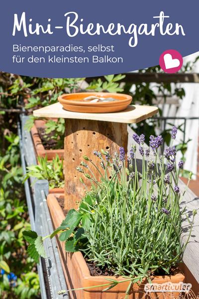 Ein selbst gebauter Mini-Bienengarten mit Blumen, Nistmöglichkeit und Tränke ist eine prima Möglichkeit, um auch den kleinsten Balkon bienenfreundlich zu gestalten.