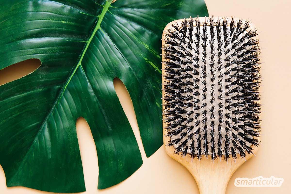 Haarausfall kann viele Gründe haben. Hier findest du typische Ursachen und verschiedene Natur- und Hausmittel, die gesundes und volles Haar fördern.