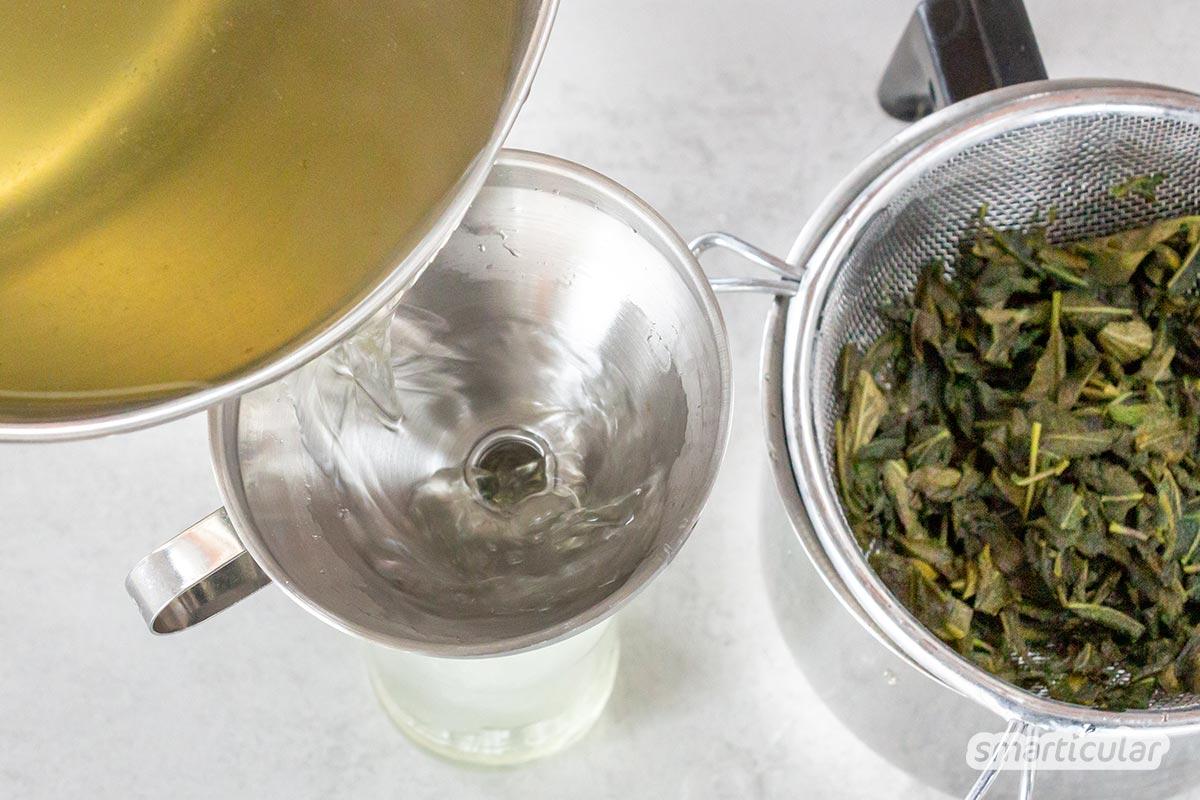 Salbei-Sirup eignet sich als Erfrischungsgetränk und Naturheilmittel bei Erkältung gleichermaßen. Mit diesem Rezept lässt sich Salbeisirup selber machen.