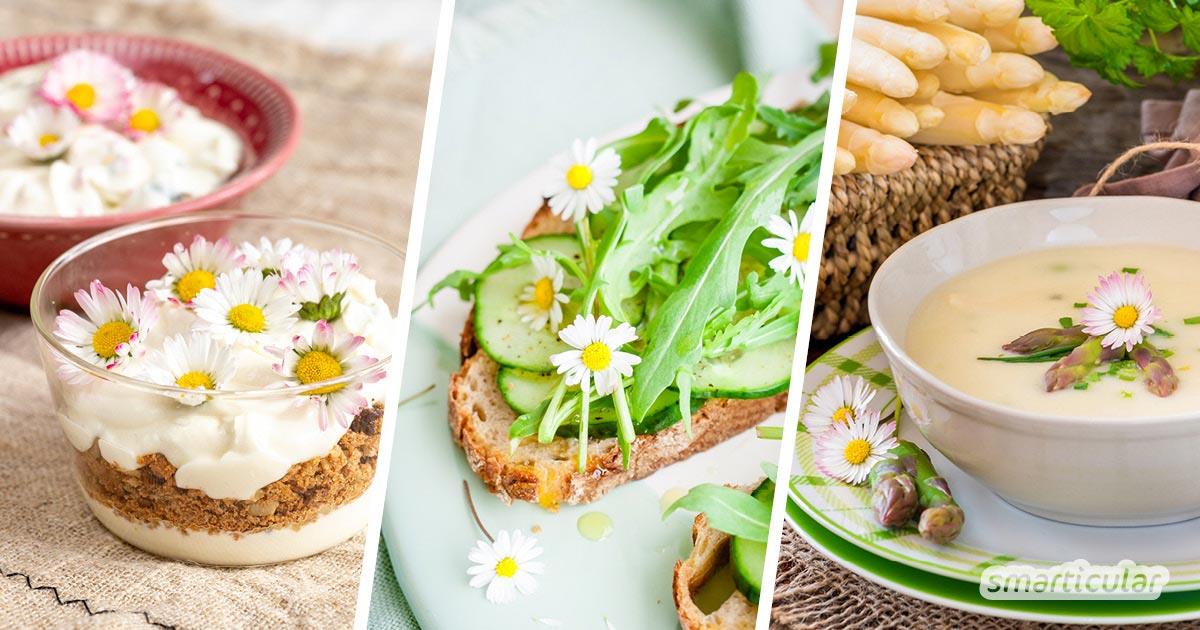 Kann man Gänseblümchen essen? Ja! Denn sie sind nicht nur hübsch anzusehen, sondern auch sehr gesund. Die besten Rezepte mit der schmackhaften Heilpflanze findest du hier.