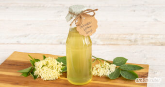 Mit diesem Rezept für Holunderblütensirup lässt sich der Sommer haltbar machen. Lecker für aromatisiertes Wasser und andere Getränke sowie Süßspeisen!