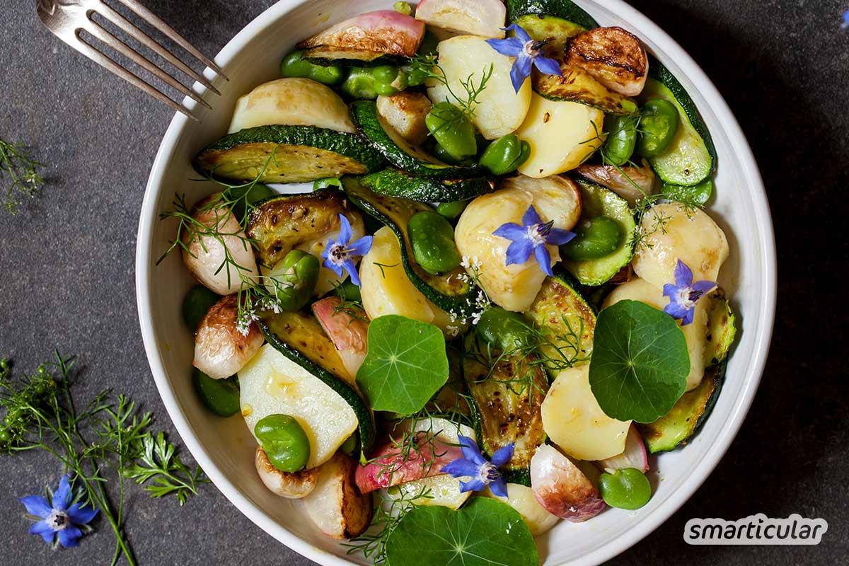 Borretsch sieht schön aus und ist unheimlich nützlich. Hier findest du alles über das insektenfreundliche Küchenkraut inklusive köstlichen Rezepten mit Borretsch.