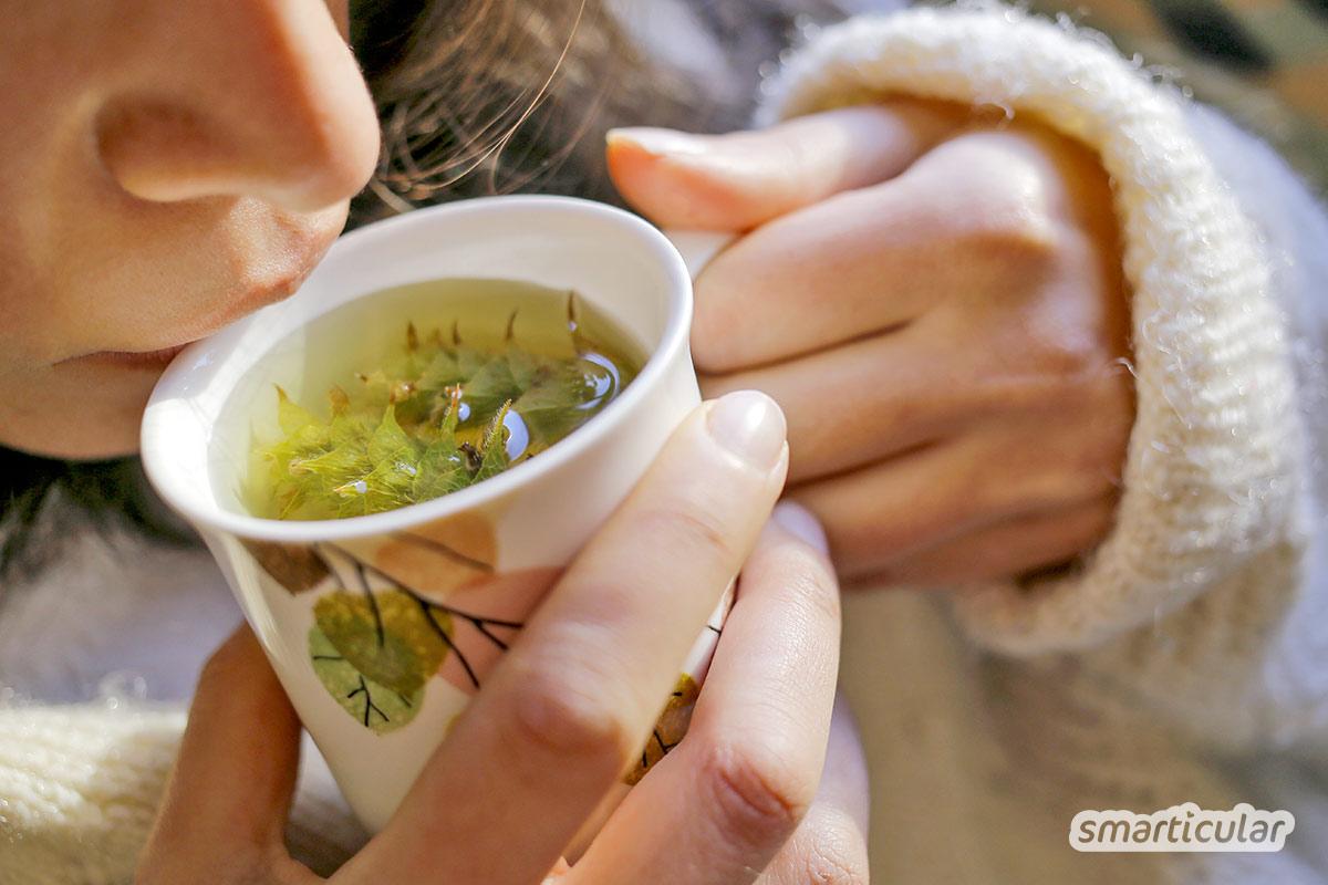 Magen-Darm-Beschwerden wie Übelkeit, Durchfall oder Blähungen lassen sich mit Hausmitteln und Heilpflanzen auf natürliche Weise lindern.