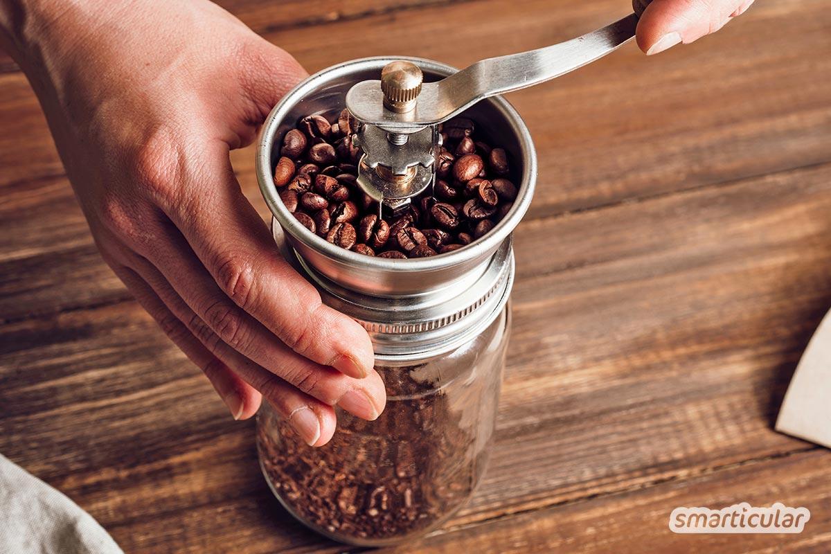 Für kalt gebrühten Kaffee, auch Cold Brew genannt, braucht es nur Kaffeebohnen und Wasser. Für den vollen Kaffeegeschmack ohne extra Zubehör!