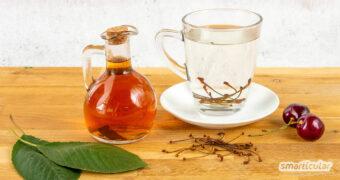 Kirschstiel-Tee gegen Husten, aromatischer Kirschblättersirup, Kirschkernkissen zur Massage: So lassen sich Kirschen verwerten - komplett von Frucht bis Blatt!
