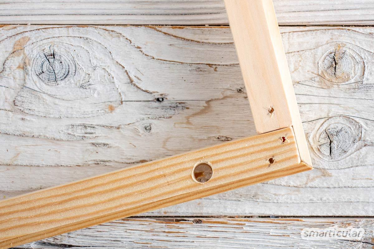 Um Kräuter, Pilze und Beeren durch Trocknen haltbar zu machen, kannst du einen Kräutertrockner aus stapelbaren Trockenrahmen selber bauen.