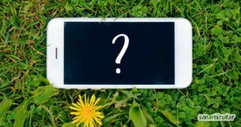 Es gibt viele Wege zum nachhaltigen Handy: Erfahre hier, wie du ein umweltfreundliches Smartphone findest und wie sich die Nutzungsdauer verlängern lässt.
